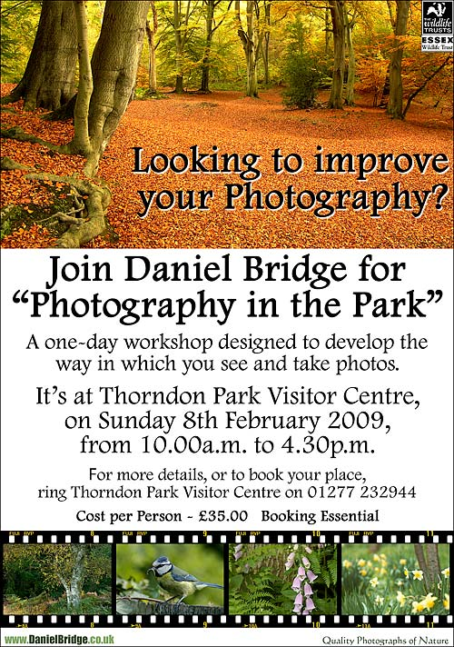 One Day photography workshop at Thorndon Country Park on SUnday 8th February 2009