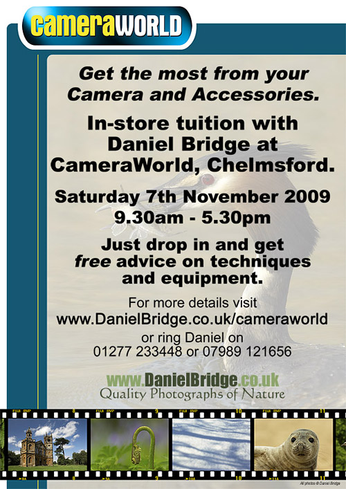 Free tuition day at CameraWorld, Chelmsford